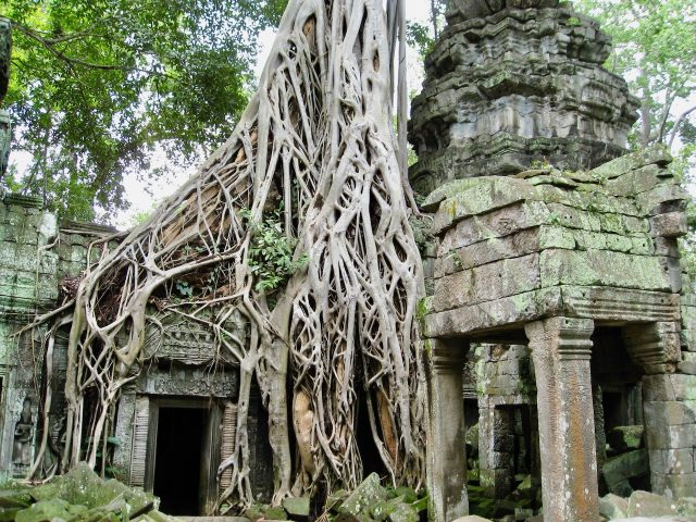 ta-phrom-angkor-photo
