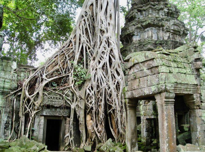 The wonders of Angkor Wat