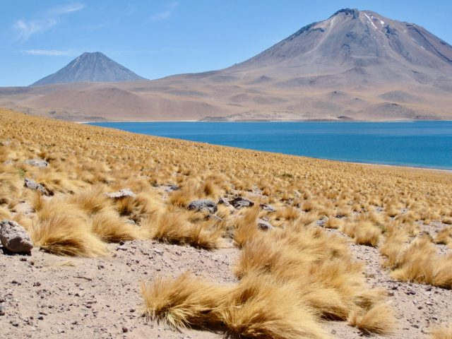 laguna-miscanti-atacama-photo