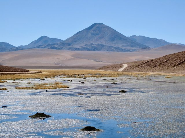 andes-altiplano-photo
