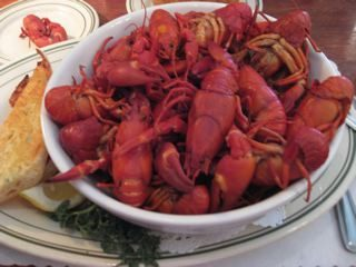 crayfish-photo