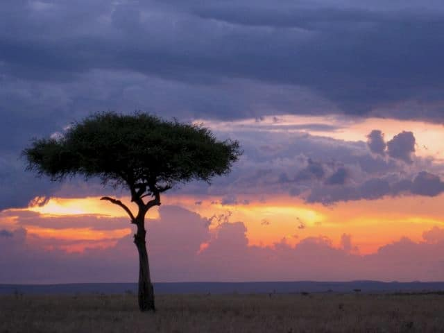 masaai-mara-kenya-sunset-photo