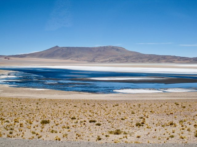 altiplano-lagoon-argentina-andes-photo