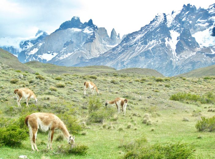 Patagonia: Home of the Gods (Part II)