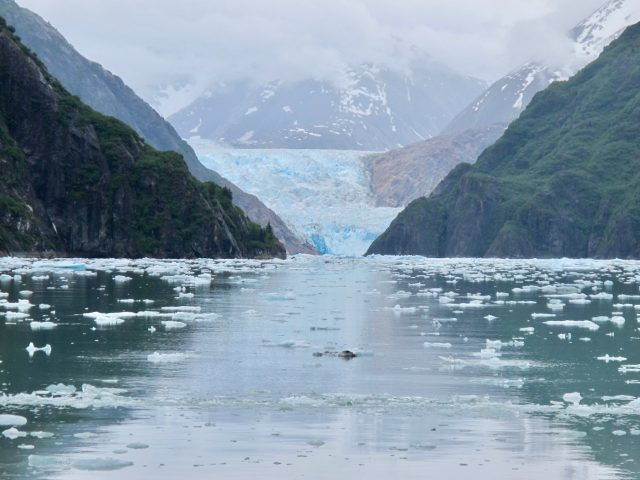 alaska-fjord-glacier-photo