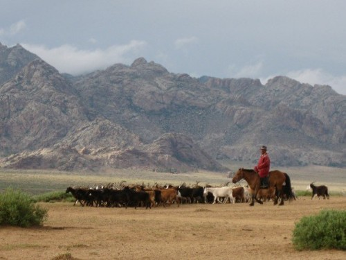 mongolia-herder-photo