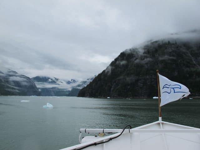 tracy-arm-fjord-innersea-discoveries-photo