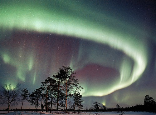 northern-lights-lapland-photo