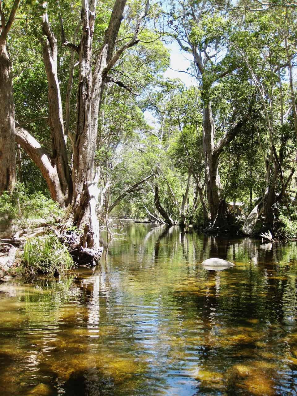source-mcleod-river-australia-photo