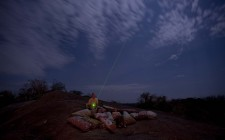 Serengeti-Stargazing-Kusini-photo