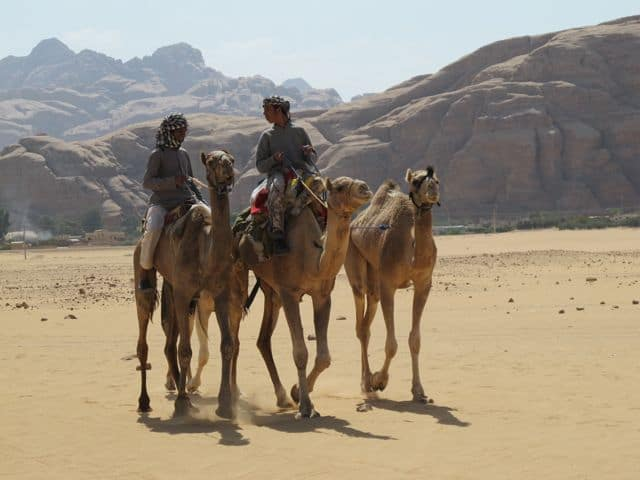 bedouins-camels-wadi-rum-photo