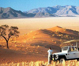 safari-namibia-photo