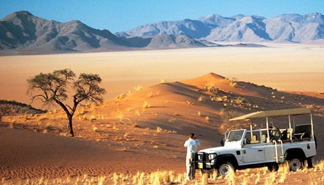 safari-namibia-photo