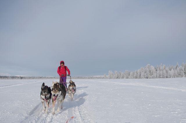 Unforgettable winter experiences