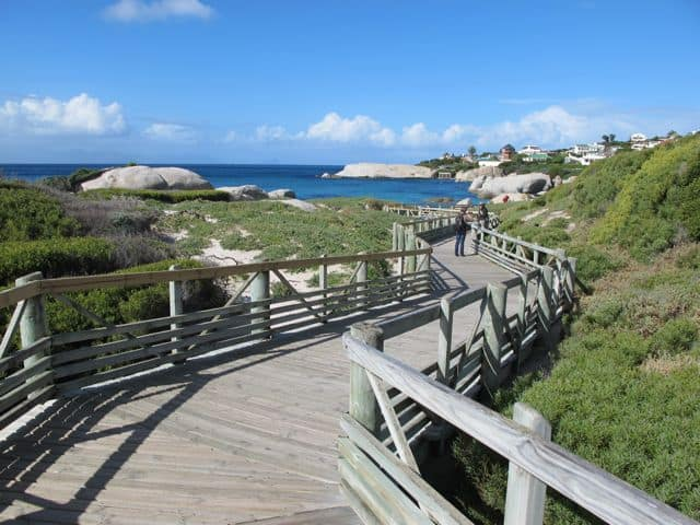 boulders-beach-boardwalk-photo