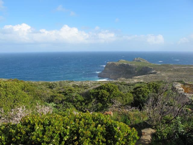 cape-point-view-photo