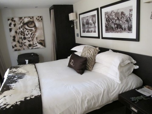 zambezi-queen-cabin-photo