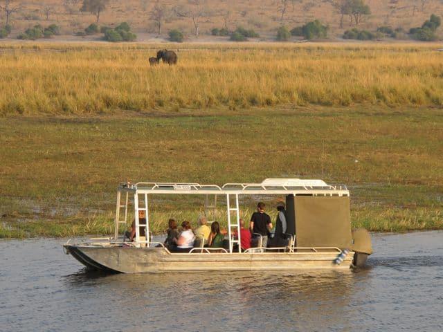 zambezi-queen-river-safari-chobe-photo