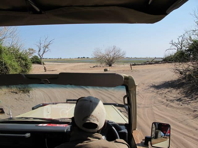 jeep-safari-chobe-botswana-photo