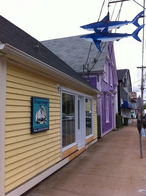 lunenburg-sharks-photo