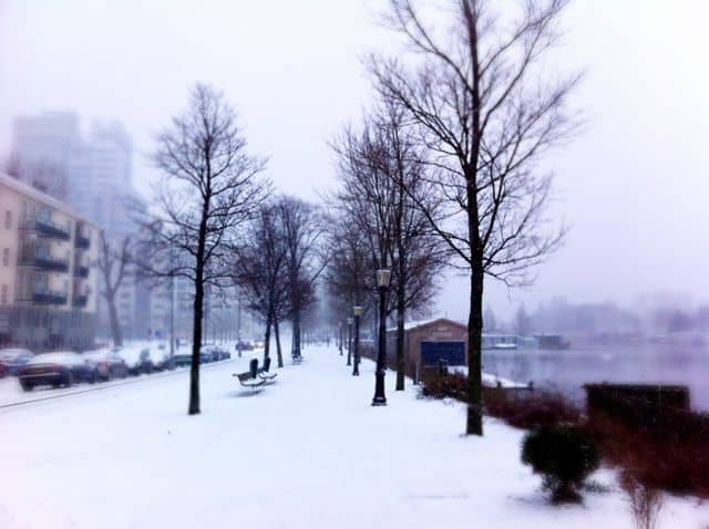 When the blizzard subsided, we were treated to gorgeous winter scenes like this snowy path along the Amstel River.