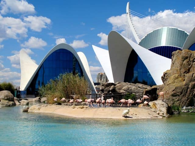 oceanografic-valencia-architecture-photo