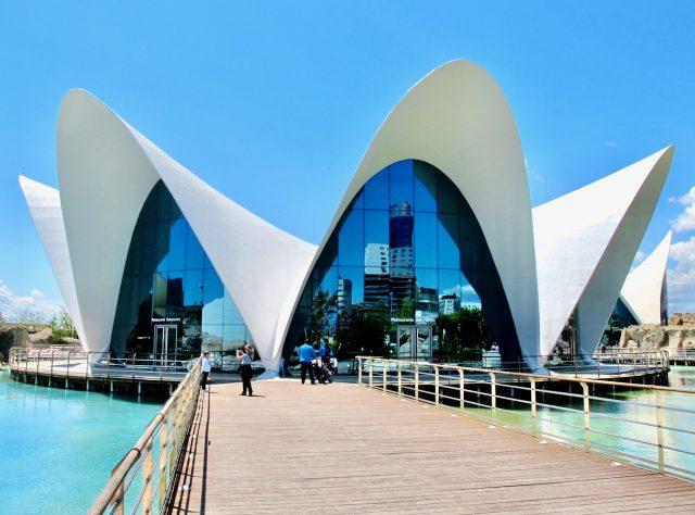valencia-aquarium-photo