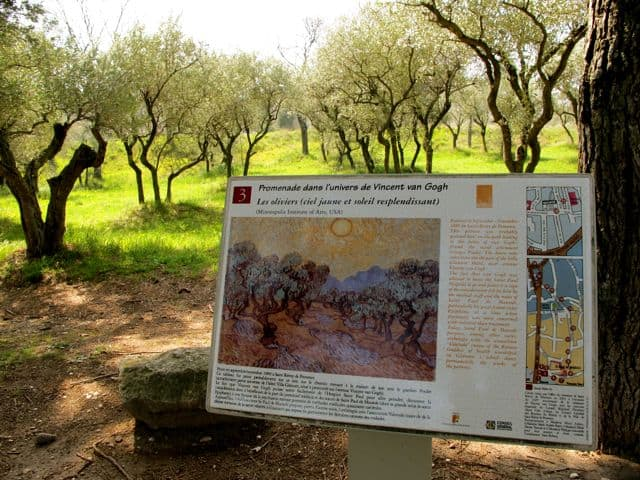 van-gogh-trail-st-remy-d-provence-photo