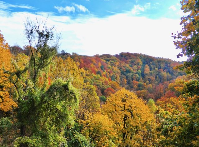 ksiaz-castle-fall-colours-photo