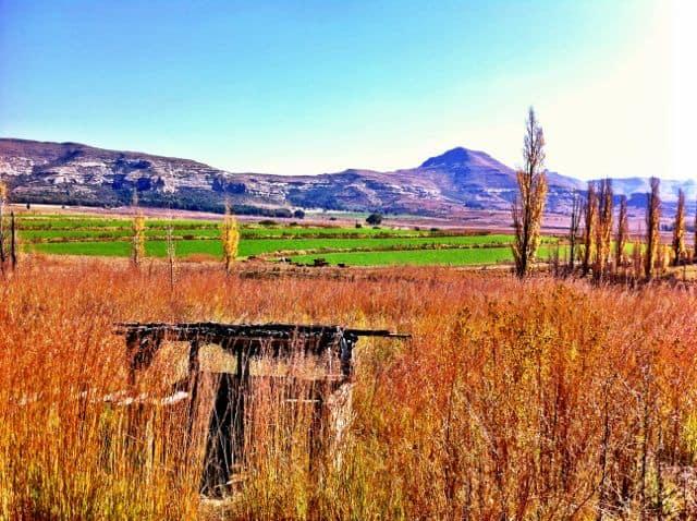 free-state-road-trip-scenery-photo