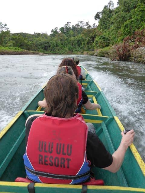 jungle-safari-brunei-photo