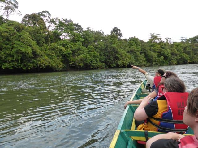 jungle-safari-temburong-brunei-photo