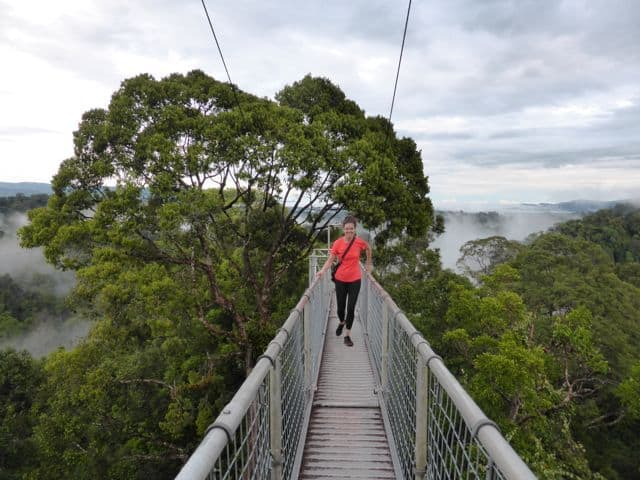 brunei-canopy-walk-bridge-photo