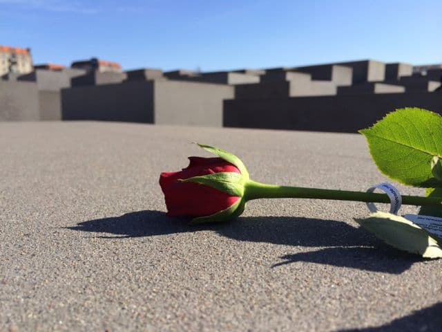 rose-holocaust-memorial-berlin-photo