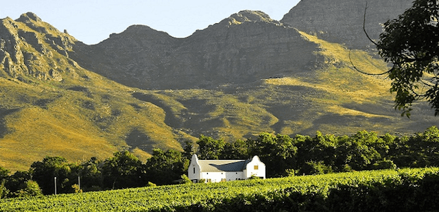A Stellenbosch winery.