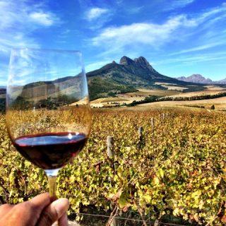 stellenbosch-wine-scenery-photo
