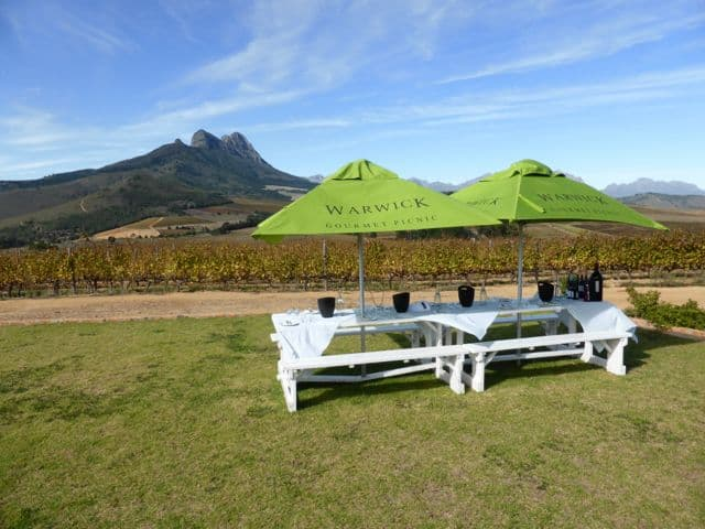 warwick-wine-estate-picnic-photo