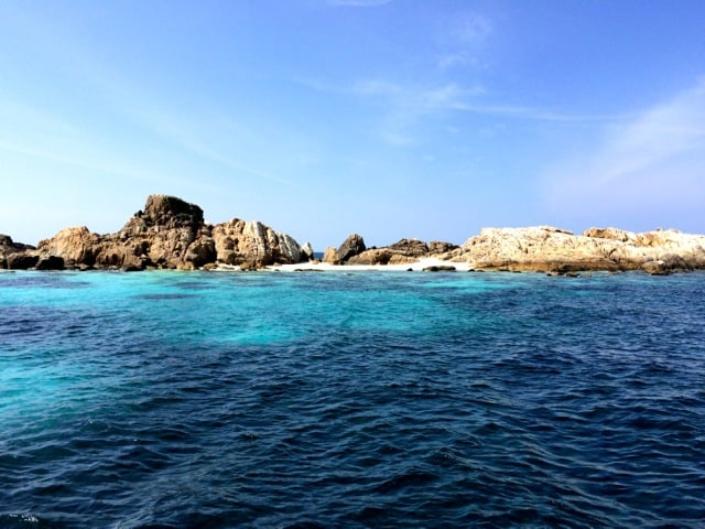 pulau-tokong-burung-photo