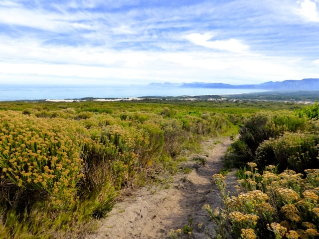 grootbos-view-walker-bay-photo