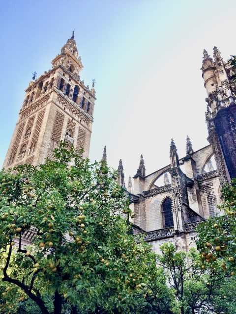 la-giralda-sevilla-photo