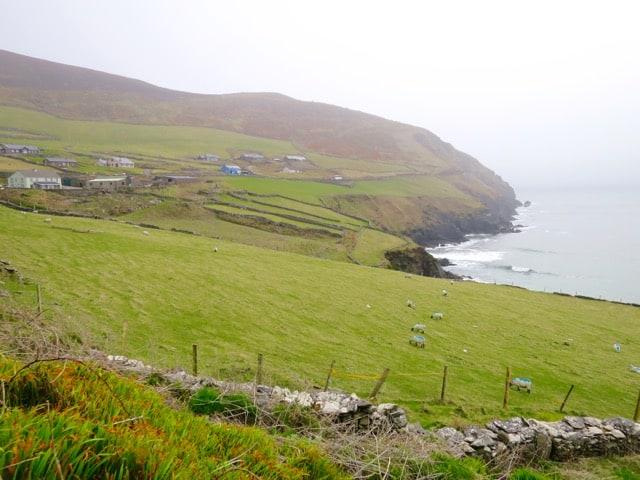 dingle-peninsula-coastline-photo