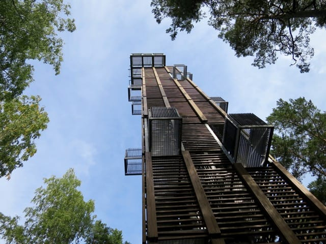 observation-tower-dzintari-forest-park-photo