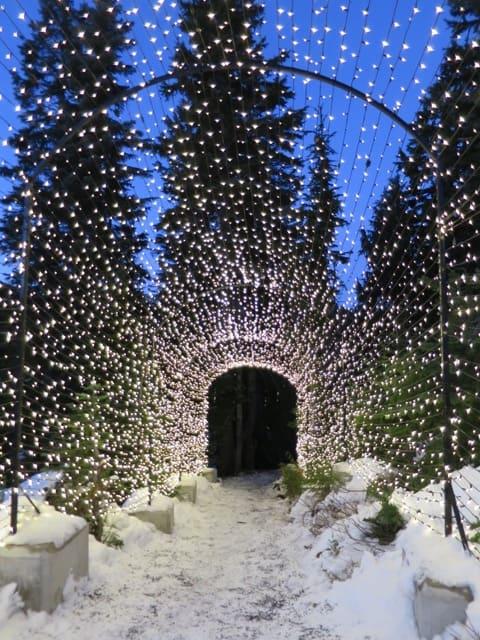 grouse-mountain-christmas-lights-photo
