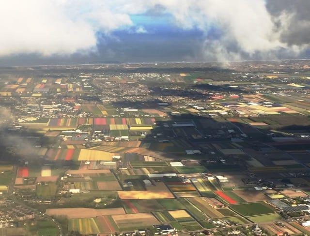 air-view-tulip-fields-photo