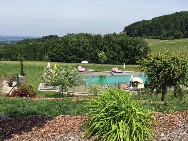 ratscher-landhaus-natural-pool-photo