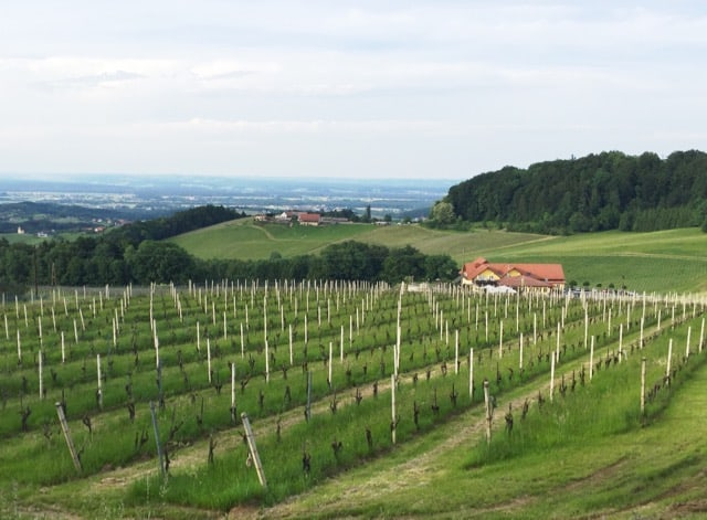 A gorgeous wine region you should know about