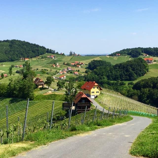 wolfgang-maitz-vineyard-scenery-photo