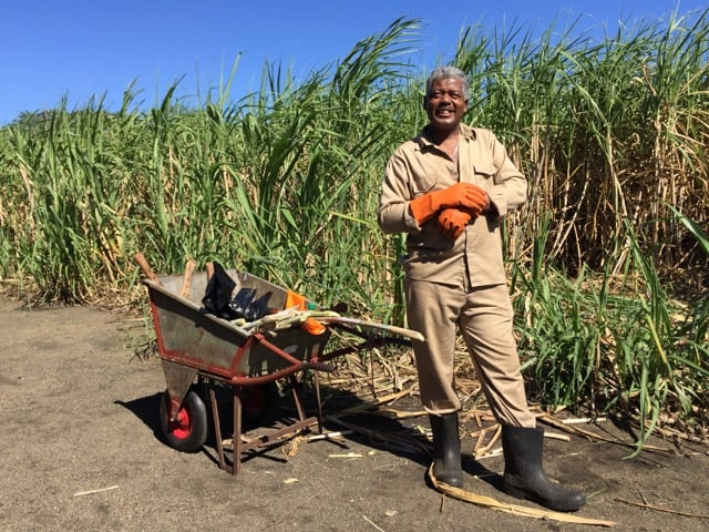 mauritius-sugarcane-farmer-photo