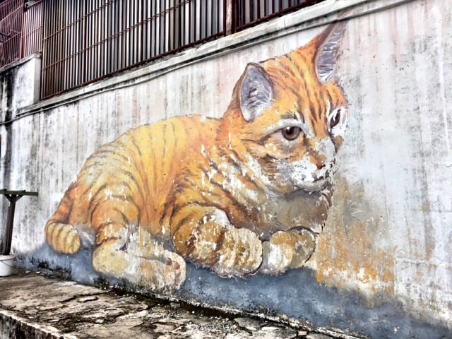 cat-street-art-george-town-photo