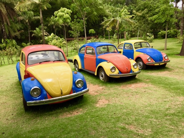 colorful-volkswagen-beetles-photo